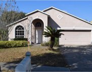 9405 Hidden Water Circle, Riverview image