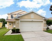 11521 Hammocks Glade Drive, Riverview image