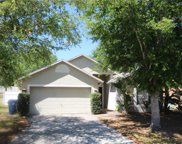 1120 Blackjack Ridge Street, Minneola image