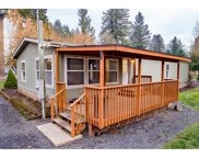 1065 NORTH RIVER  DR, Sweet Home image