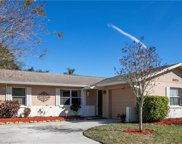 3024 Sarah Drive, Clearwater image
