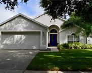 13705 Staghorn Road, Tampa image