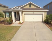 11536 Tangle Stone Drive, Gibsonton image