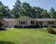 25 Cook Springs Rd, Pell City image