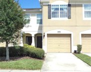 10208 Red Currant Court, Riverview image