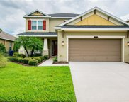 9157 Bella Vita Circle, Land O' Lakes image