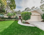 2831 Meadow Wood Drive, Clearwater image