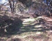 Forest Park, Oakhurst image