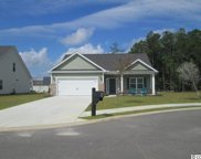 4028 Woodcliffe Drive, Conway image