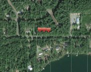 111 XX Guthrie Rd, Anderson Island image