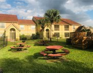 421 Fountainhead Circle Unit 110, Kissimmee image