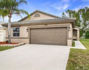 9911 Red Heart Ln, Tamarac image