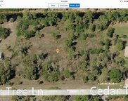 5771 Cedar Tree Ln, Naples image