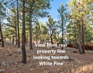 2416 N White Pine Drive, Flagstaff image
