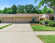 4042 Salem Square Parkway, Palm Harbor image