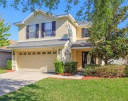11118 Irish Moss Avenue, Riverview image