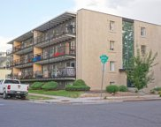 100 South Clarkson Street Unit 102, Denver image