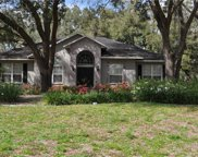 11407 Donneymoor Drive, Riverview image