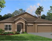 11438 Leland Groves Drive, Riverview image