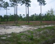 Tract 7 Redwolf Trail, Myrtle Beach image