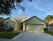 12335 Glenfield Avenue, Tampa image