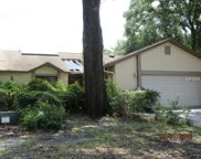 1041 Old South Lane, Apopka image