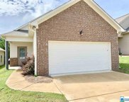 925 Maple Trc, Odenville image