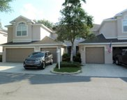 3646 Country Pointe Place, Palm Harbor image