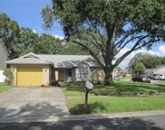 12722 Trowbridge Lane, Tampa image