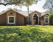 8803 Crosswood Court, Riverview image