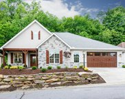 58 Carriage Highlands  Court, Hendersonville image