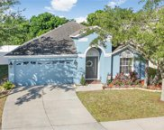 11533 Addison Chase Drive, Riverview image