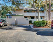 1 Stoney Creek Road Unit #255, Hilton Head Island image