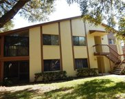 515 Longfellow Court #A Court Unit A, Safety Harbor image