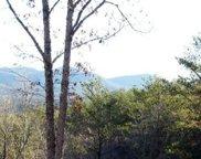 LOT 6 Willow Ridge, Tr 10, Warne image