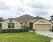 17900 Linkview Dr, Dripping Springs image