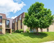 1103 North Mill Street Unit 311, Naperville image