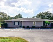 208 Lithia Pinecrest Road, Brandon image