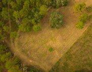 Millstone Plantation Rd., Tallahassee image
