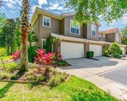 4902 Anniston Circle, Tampa image