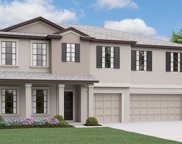 6102 Horse Mill Place, Palmetto image