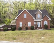 2206 Red Tail, Chattanooga image