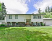 27611 N Bear Lake, Chattaroy image