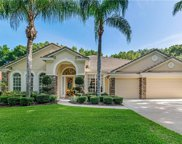 1048 Bloomsbury Run, Lake Mary image