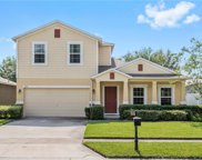 4825 Waters Gate Drive, Tavares image