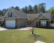 110 River Watch Dr., Conway image