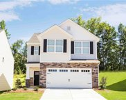 213  Shoshoni Court, Fort Mill image