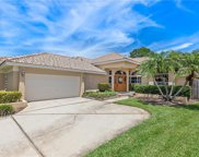 961 Live Oak Avenue Ne, St Petersburg image