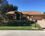 14640 Bald Eagle  Drive, Fort Myers image