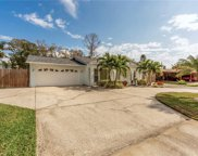 4143 Overlook Drive Ne, St Petersburg image